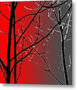 Red And Gray Metal Print