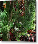 Red And Green Foliage Metal Print