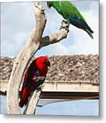 Red And Green Parrots Metal Print