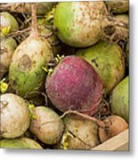 Red And Green Radishes Metal Print