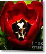 Red And Tulip Metal Print