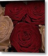 Red And White Roses Color Engraved Metal Print