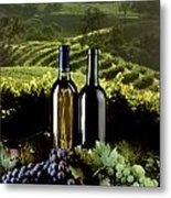 Red And White Wines Metal Print by Craig Lovell