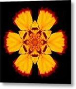 Red And Yellow Marigold II Flower Mandala Metal Print