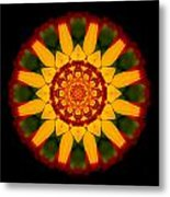 Red And Yellow Marigold V Flower Mandala Metal Print