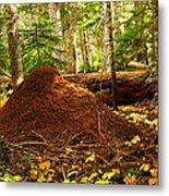 Red Ants Nest Metal Print