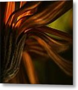 Red Autumn Blossom Detail Metal Print