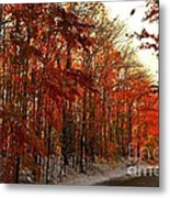 Red Autumn Road In Snow Metal Print