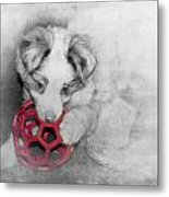 Red Ball Metal Print