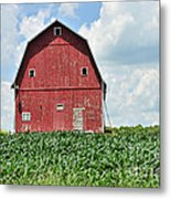 Red Barn And New Corn Metal Print