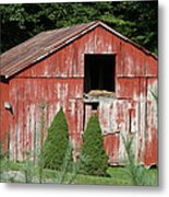 Red Barn Two Trees Metal Print by Paulette Maffucci