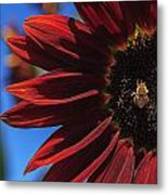 Red Be There Metal Print