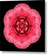 Red Begonia I Flower Mandala Metal Print