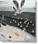 Red-billed Seagulls Metal Print