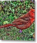 Red Bird Art Metal Print