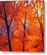 Red Blaze Metal Print by Nancy Merkle