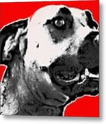Red Blooded Scooby Dog Metal Print