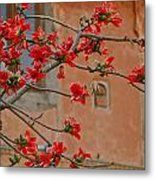 Red Blossoms In The Pink City Metal Print