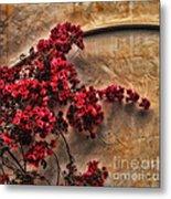 Red Bougainvilla Vine On Stucco Wall Metal Print