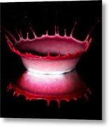 Red Bowl Metal Print