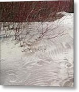 Red Branches On Beach Metal Print
