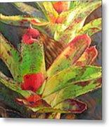 Red Bromeliad Metal Print