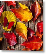 Red Butterfly In Autumn Leaves Metal Print