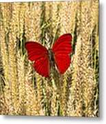 Red Butterfly In The Tall Weeds Metal Print