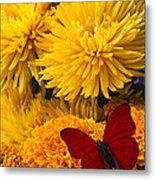 Red Butterfly On African Marigold Metal Print