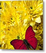 Red Butterfly On Poms Metal Print