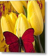 Red Butterfly Resting On Tulips Metal Print