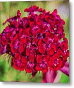 Red Carnations Metal Print by Omaste Witkowski