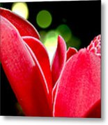Red Chalice Metal Print