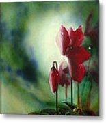 Red Cyclamen Metal Print