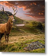 Red Deer Stag And Mopuntains Metal Print