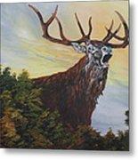 Red Deer - Stag Metal Print