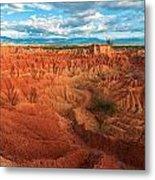 Red Desert Landscape Metal Print