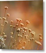 Red Dream Metal Print