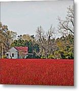 Red Field Metal Print