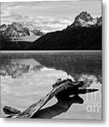 Red Fish Lake Idaho Metal Print