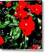 Red Flowers Among Green Leaves Metal Print