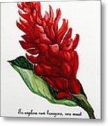 Red Ginger Poem Metal Print