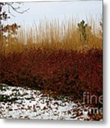 Red Gold Hedge Metal Print