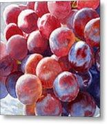 Red Grape Essence Metal Print