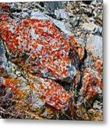 Red Growth Rock Metal Print