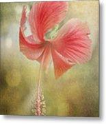 Red Hibiscus Metal Print by David and Carol Kelly