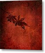 Red Japanese Maple On Red Metal Print