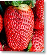 Red Juicy Delicious California Strawberry Metal Print