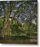 Red Ladder And Oak Metal Print