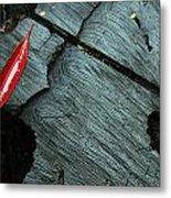 Red Leaf On Cut Wood Metal Print